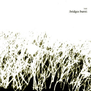 Vomit Orchestra - Bridges Burnt CD (Lim500)