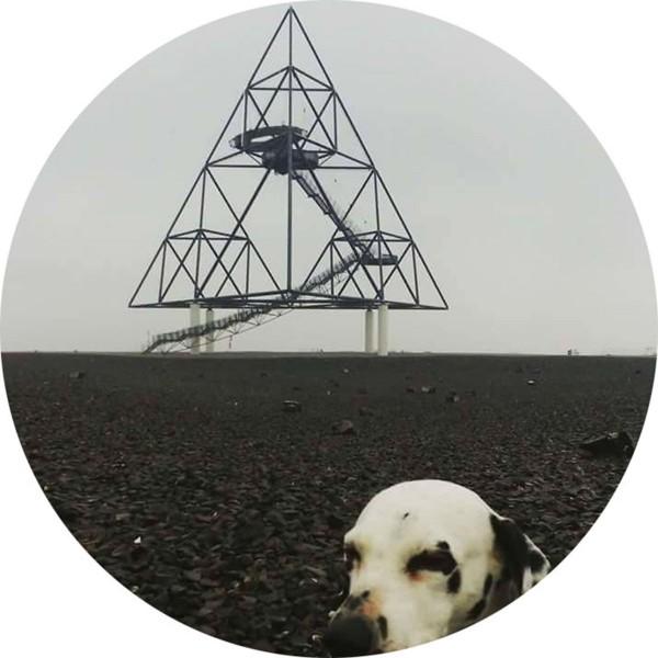 """GERTRUD STEIN - Moonlandings 12"""" EP (Lim500) 2018"""