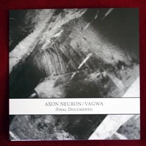 Axon Neuron / Vagwa - Final Documents 7 (Lim63)