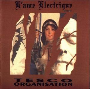 V/A Sampler - L'Ame Electrique CD