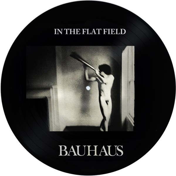 Bauhaus - In The Flat Field Pic LP (Lim200)