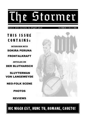 THE STORMER zine - issue 1 (BIG A4)
