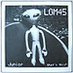 "LGM45 - Junior / What's This? 7"" (2002)"