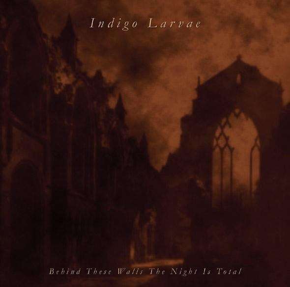 Indigo Larvae (Stahlwerk 9) - Behind These Walls CD (Lim500)