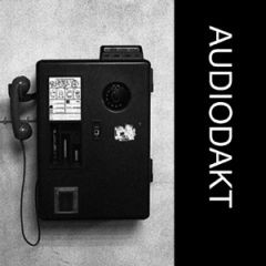 Audiodakt - Erlösung / Zukunft 7